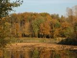 Dortmund Ems Kanal im Herbst